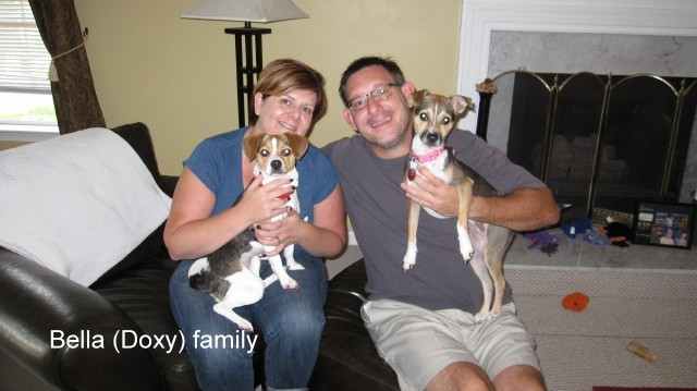 Bella-Doxy_and_Family