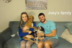 Joey_and_Family
